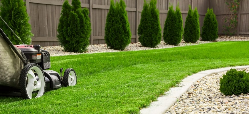 Garden and Lawn Edging Ideas & Tips