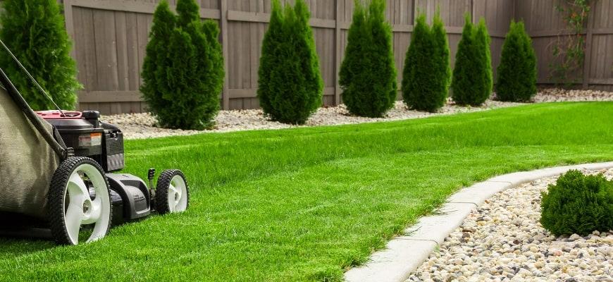 Garden and Lawn Edging Ideas & Tips
