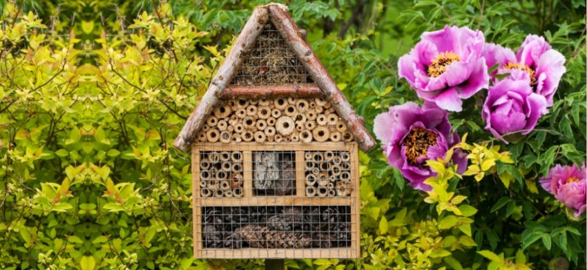 Tips for Planting a Bee Garden at Home - a solitary bee house in the garden