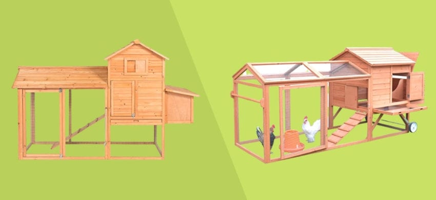 What's the Difference Between a Chicken Coop and Tractor in a two tone green background