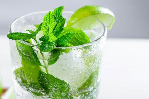Fresh Mint in Drink