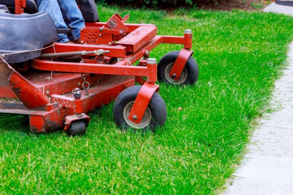 Closeup of red Lawn mower cutting grass