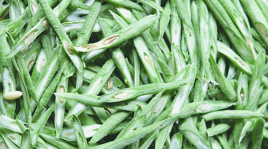 black eyed peas in green pods