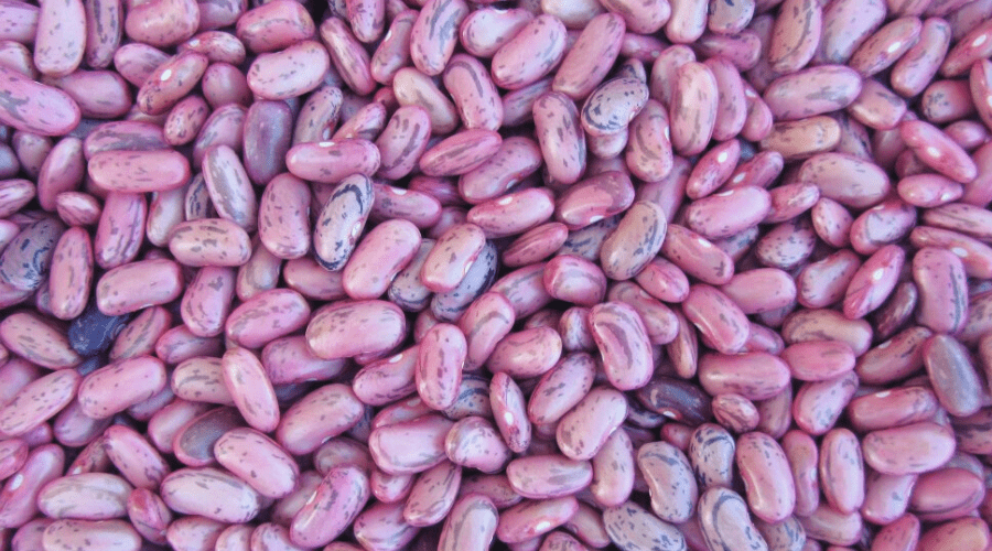 dry red beans in a pile