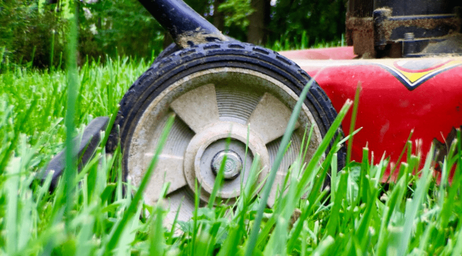 lawn mower in grass close up