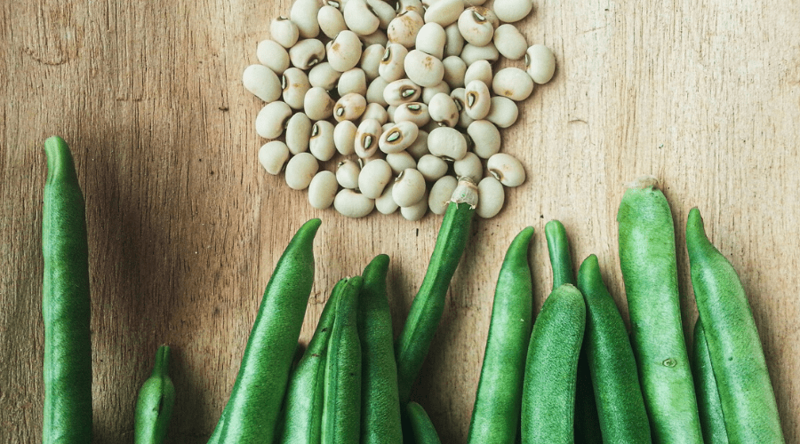 green snap bean seeds and pods