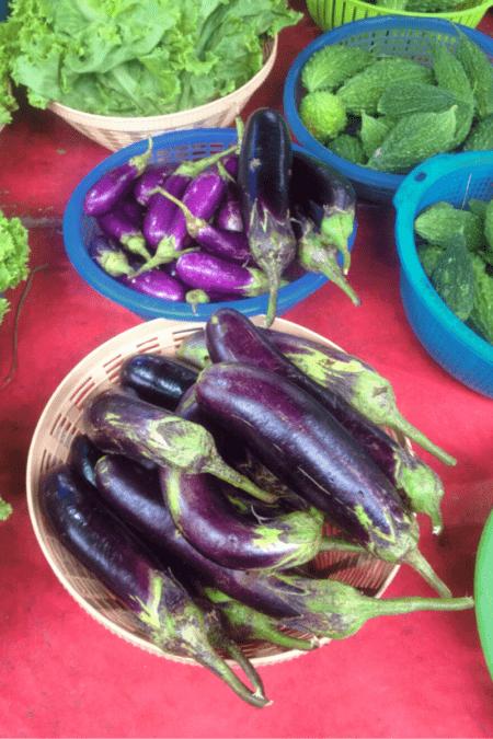 homegrown eggplant varieties in bowls