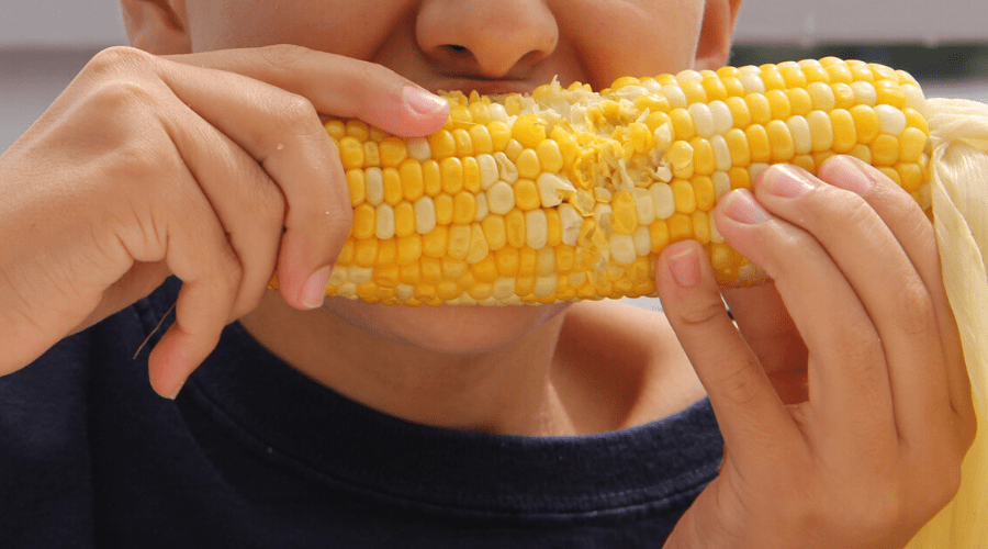 boy eating corn on the cob outdoors closeup