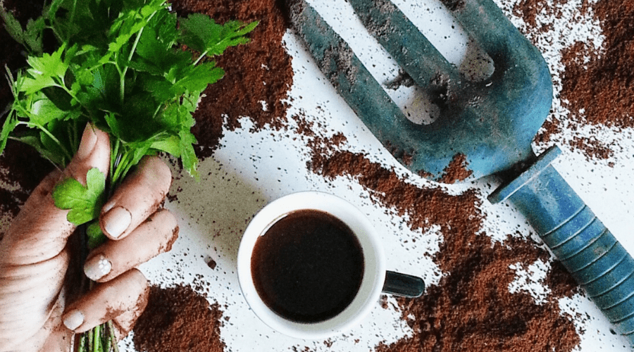 coffee grounds soil garden tools
