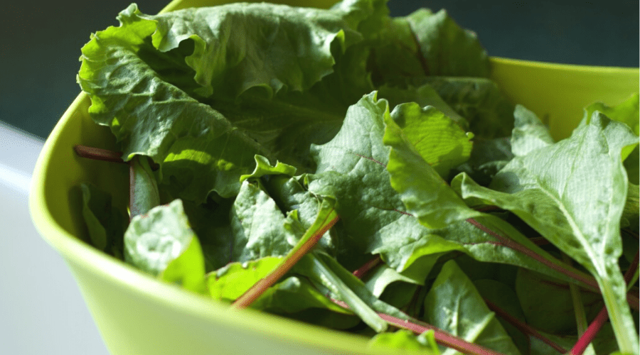 mixed lettuce leaves in strainer bowl in sink
