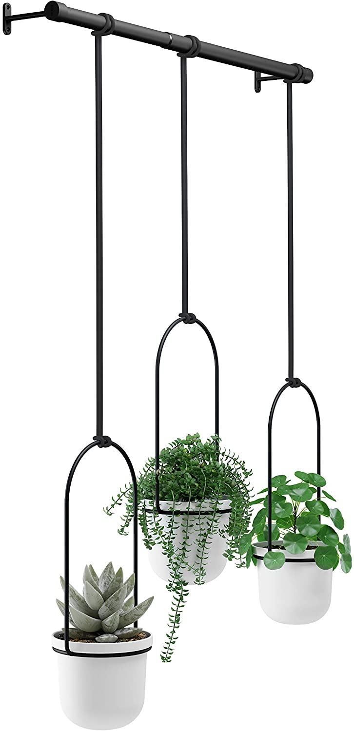 Umbra Triflora Hanging Planter for Small Plants