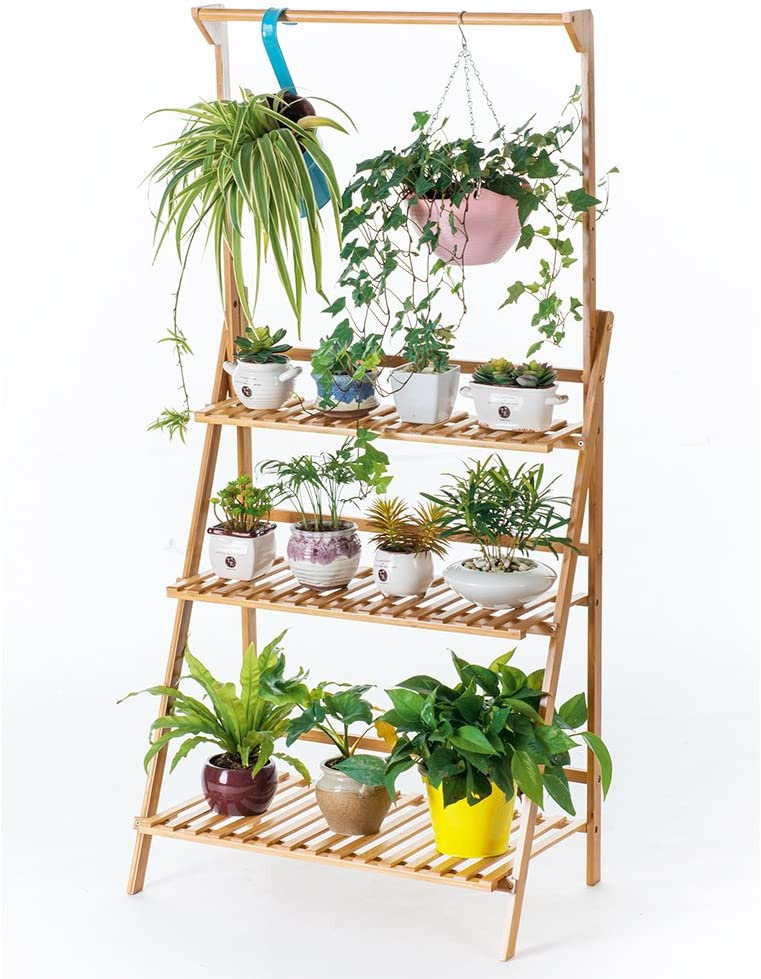 COPREE Ladder Shelves