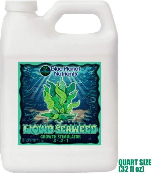 Buy Liquid Seaweed at Amazon