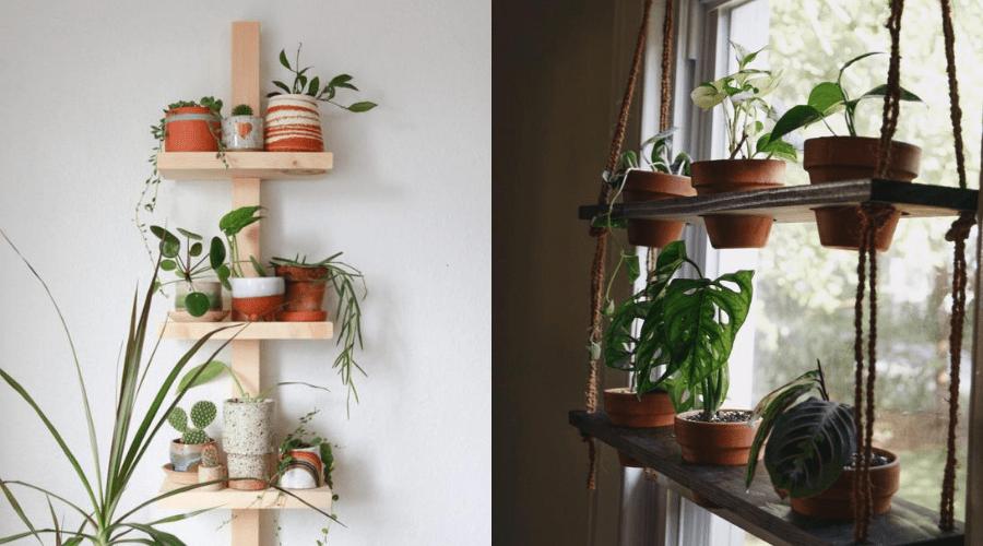 plant shelf tutorials for narrow spaces and window shelves