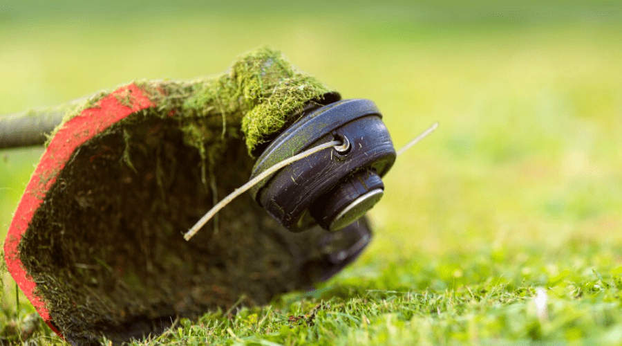 string trimmer edge trimmer lying on newly cut grass closeup