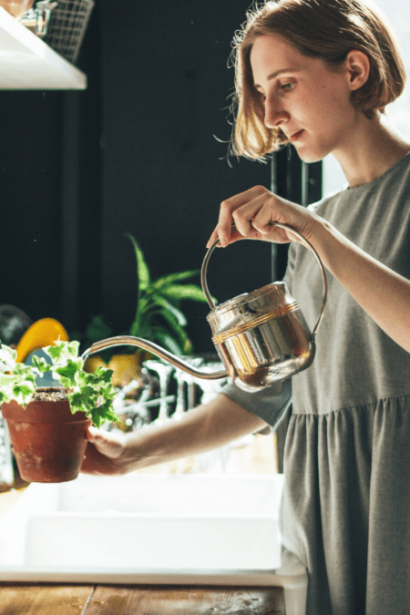 woman watering houseplants with metal watering can