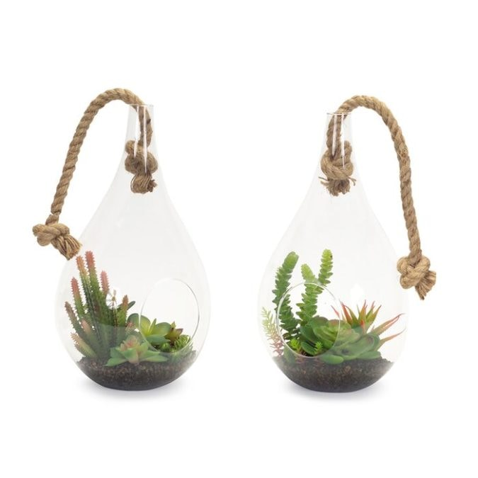 hanging planters for air plants from wayfair