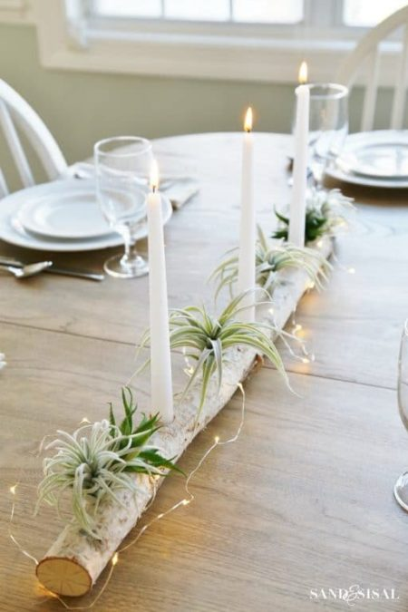 air plant display centerpiece birch log table setting