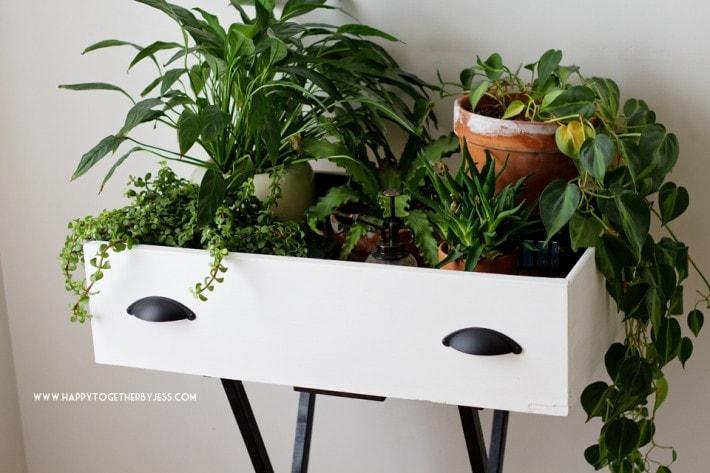 drawer shelf plants diy 7