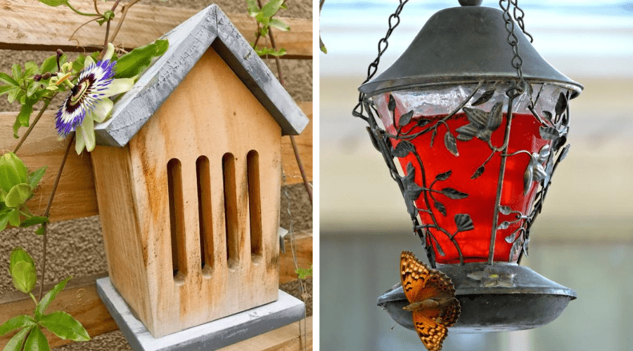 BUTTERFLY HOTEL AND BUTTERFLY FEEDER ADDITIONAL FEATURES IN BUTTERFLY GARDEN