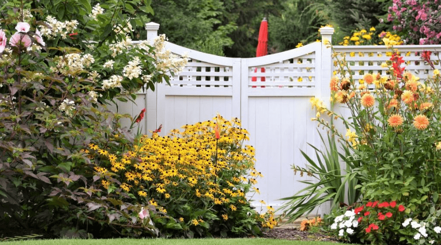 butterfly garden near a white fence