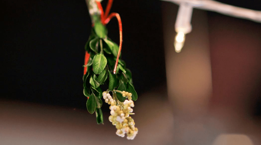mistletoe against a dark bokeh background hanging with lights.