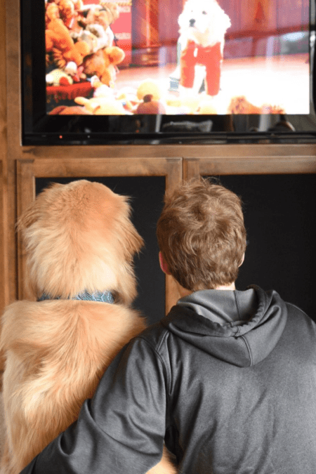a boy and his best friend dog watch christmas movies