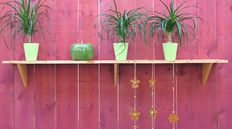 diy plant shelf bracket wide three plants in green pots with apple sculpture on DIY shelf against dark red wooden wall