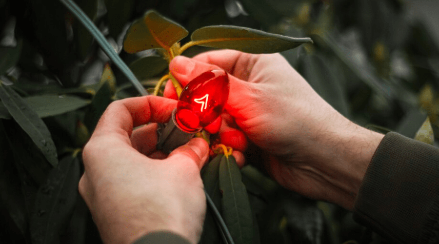 how to fix christmas lights