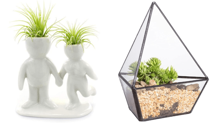 air plant displays planters that look like people and geometric terrariums for sale