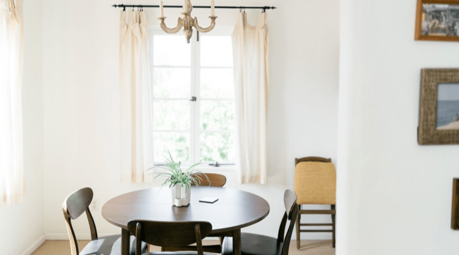 airy dining room with plant on table and white walls