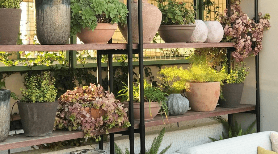 outdoor plant stand shelving DIY display for houseplants