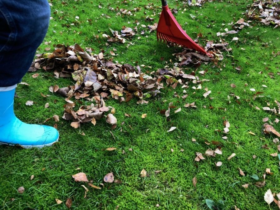 rake leaves with closed to e shoes garden shoe safety hack