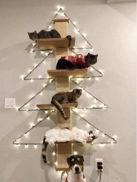 cat tree alternative christmas tree idea