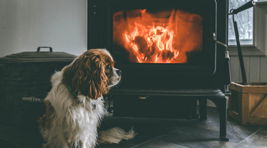 how to use a fireplace dog tax wood burning fire