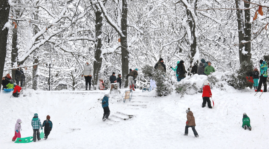 kids and adults sledding outdoors winter in park