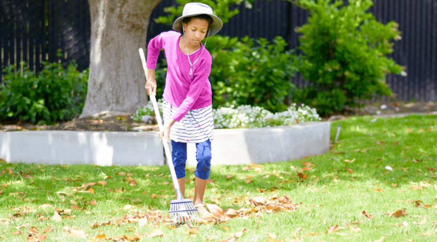 girl raking up newly fallen fall leaves. Yard clean up. Outdoors work.