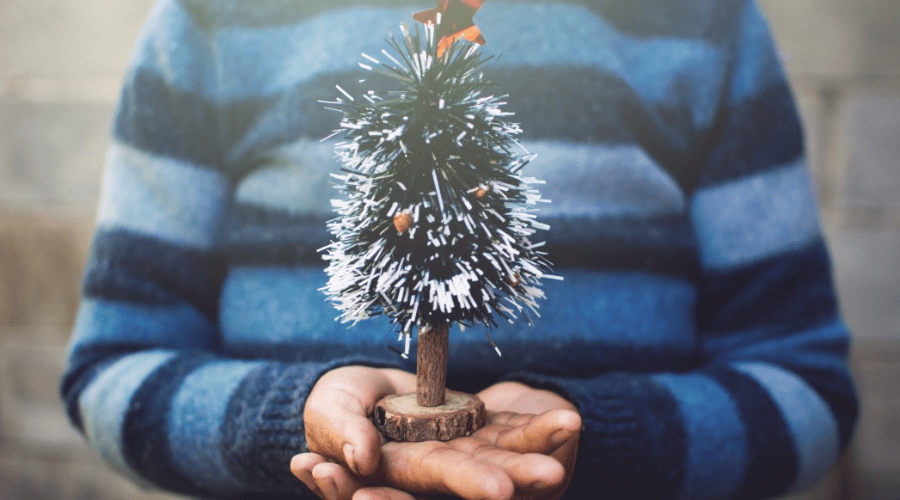 woman holding small mini christmas decor from artificial tree