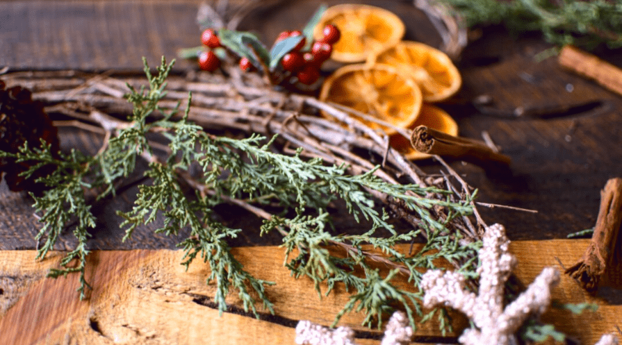 pine boughs, grapevinem dried oranges and cranberries for making natural christmas decorations