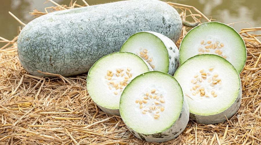 winter melon raw cut slices