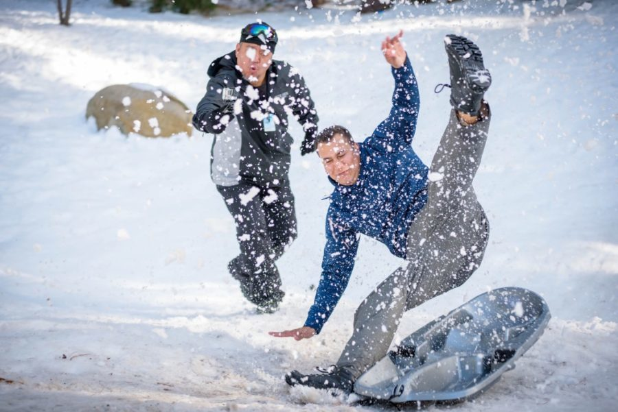 man falling from sled in snow