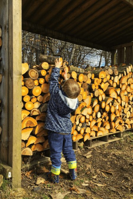firewood in outdoor storage with small boy pulling logs