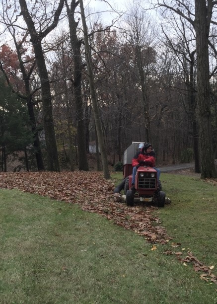 mowing dead leaves into the grass leaf raking hack