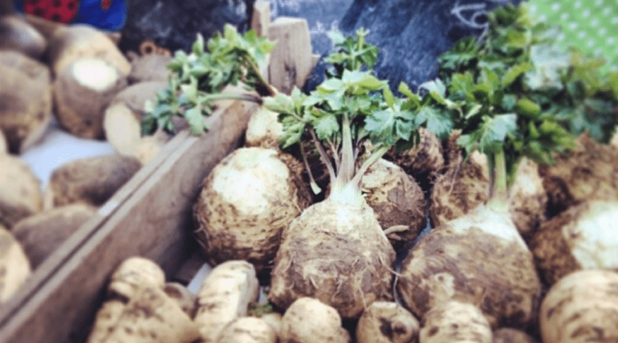 celeriac celery root at farmer's market with swedes and parsnips outdoors