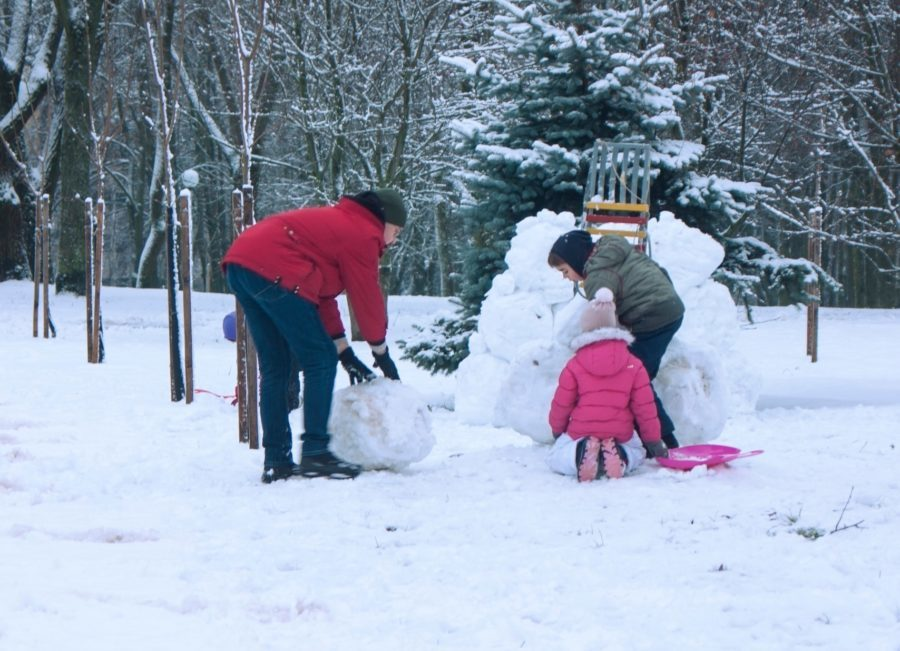 dad with kids make a snow fortress, children, game, fun, joy, cold, frost, children, people. outdoor, play, indulge, winter holidays, girl, boy, together, snowballs, winter, snowflake, snow,