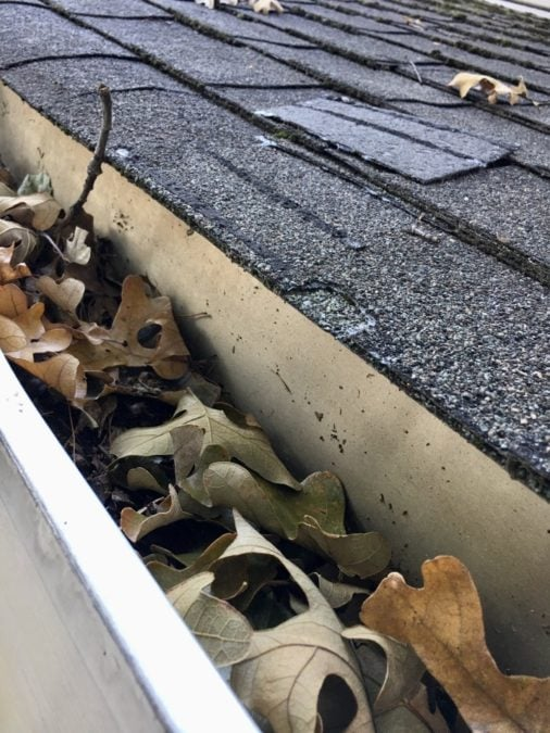 Dried up leaves in a gutter in the fall