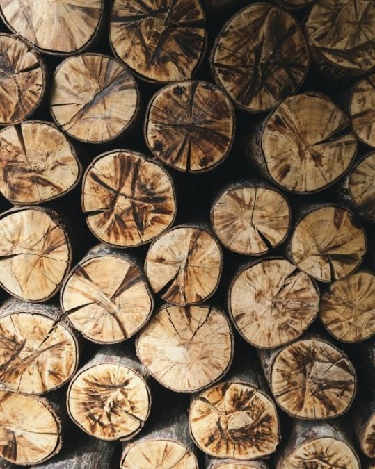 firewood deep cracks in seasoned dry wood from cut ends