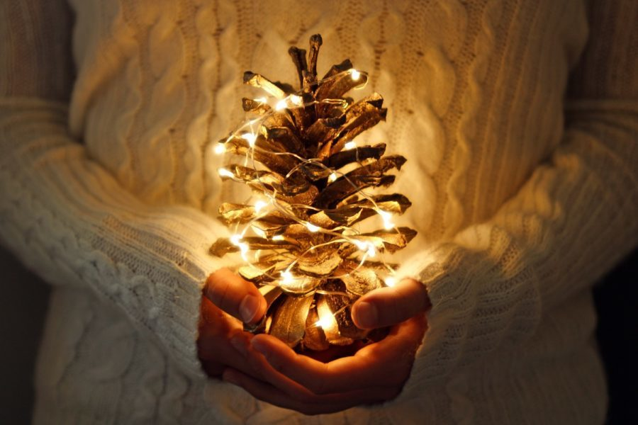 pine cone crafts for natural christmas decorations