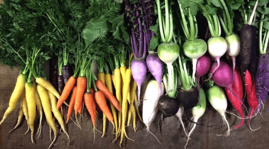 grow vegetables in winter wide featured colorful, freshness, vegetable, radish, fresh, vegetables, vegan, carrots