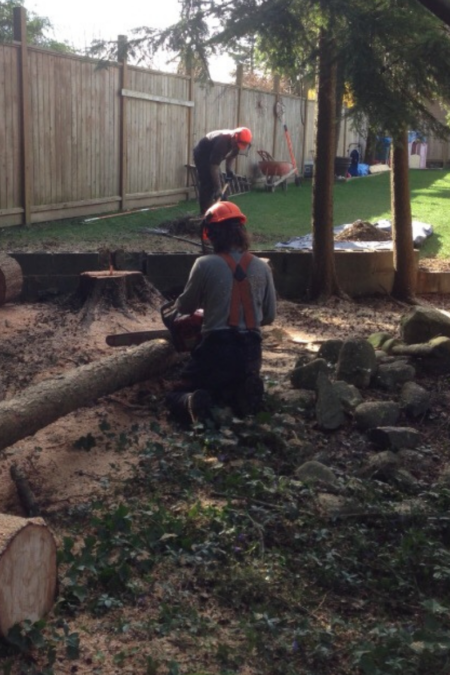 husqvarna chainsaws in use outdoors
